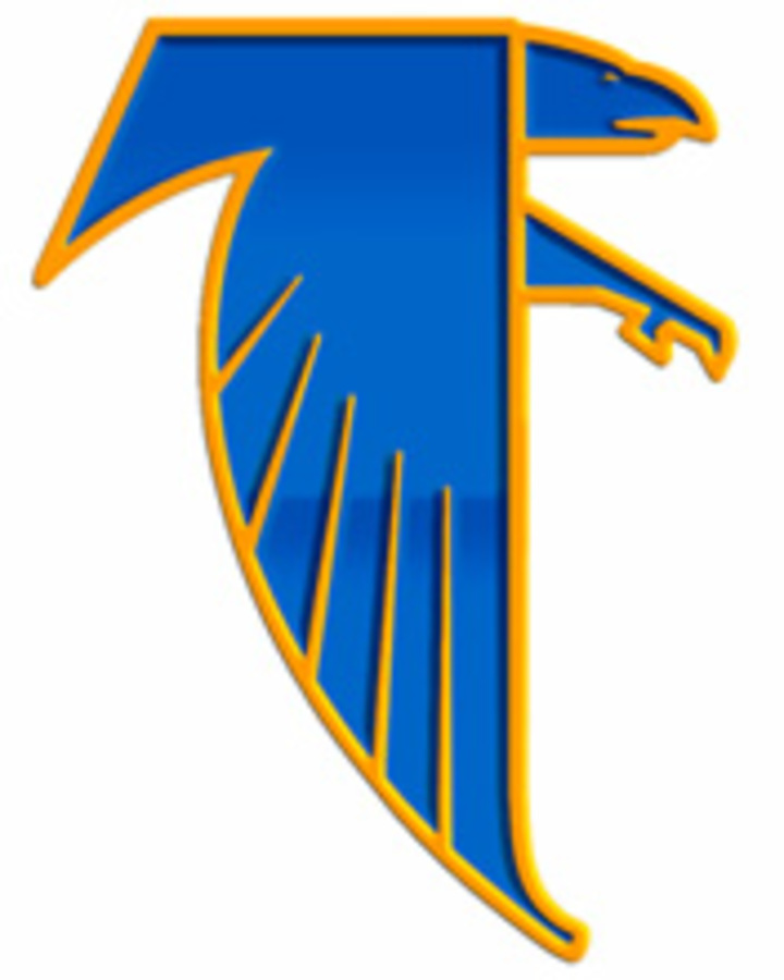 Wheaton North High School mascot