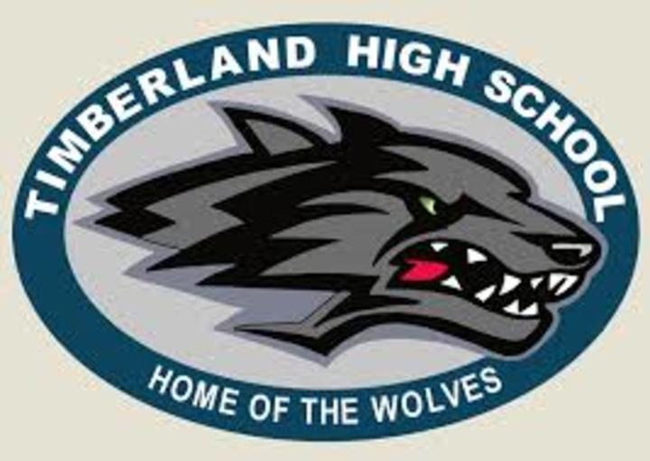 Timberland High School mascot
