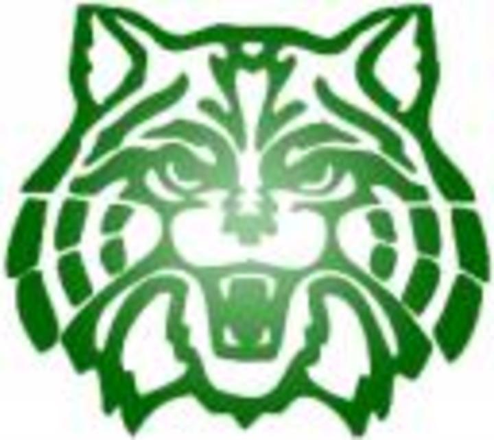Plainfield Central High School mascot