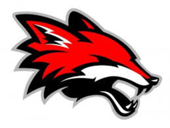 Yorkville High School mascot