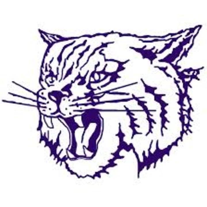 Thornton Township High School mascot