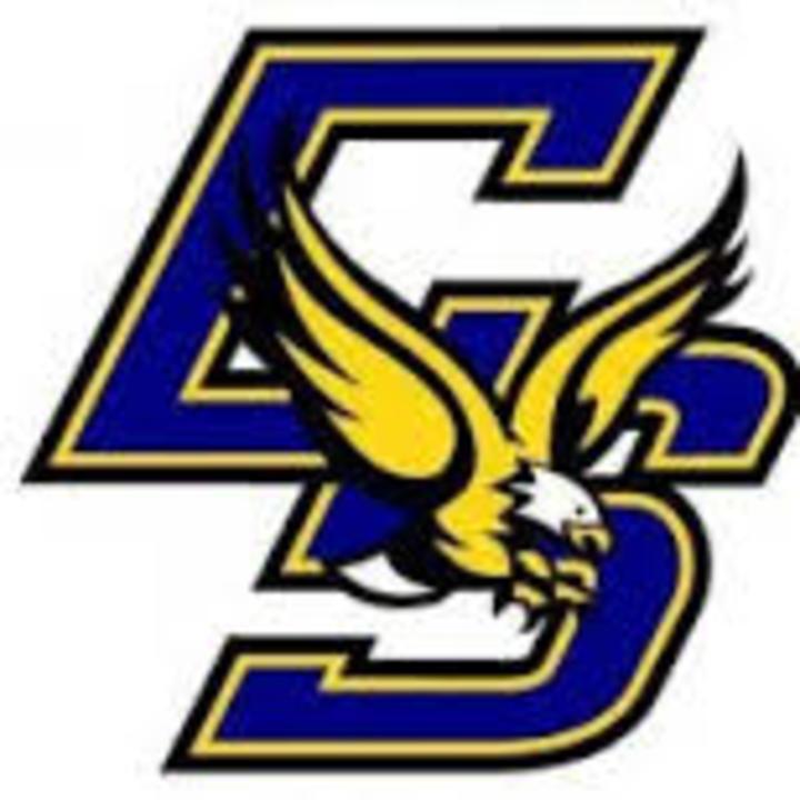 Sandburg High School mascot
