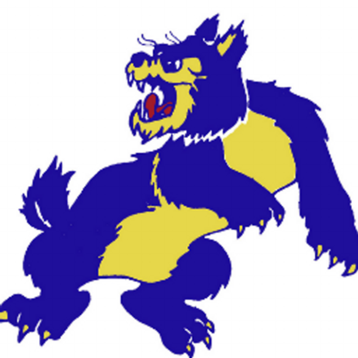 Wheeling High School mascot