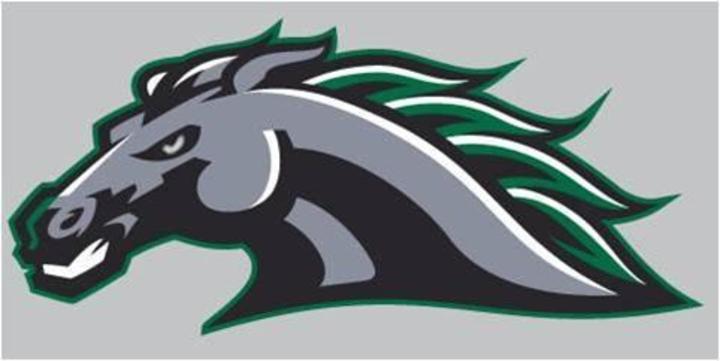 Evergreen Park High School mascot