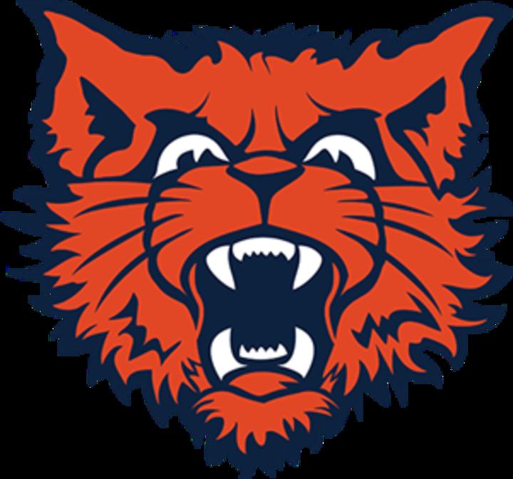Evanston High School mascot