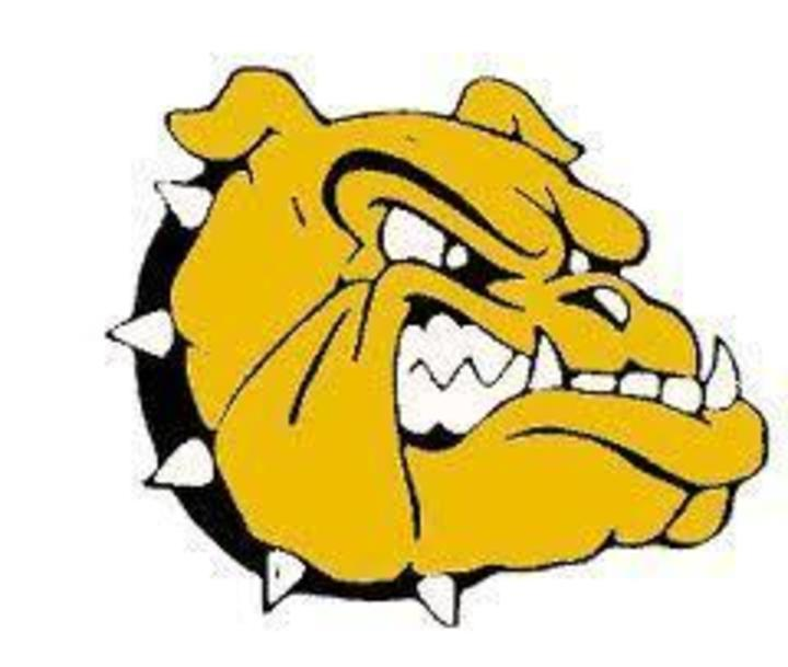 Richards High School mascot