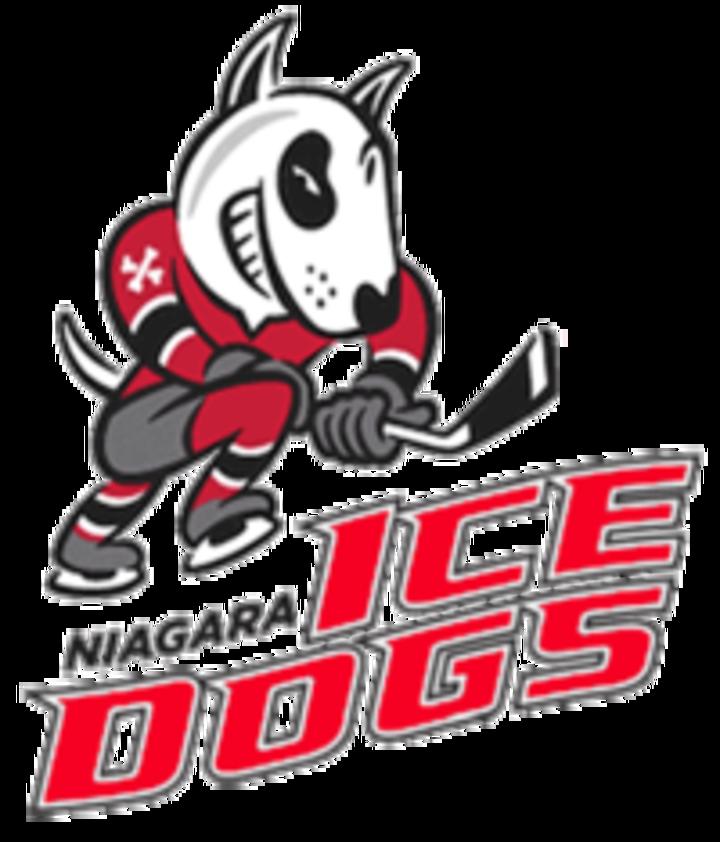 Niagra Ice Dogs