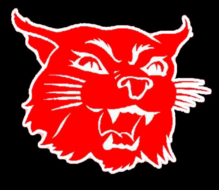 Harding Academy High School mascot