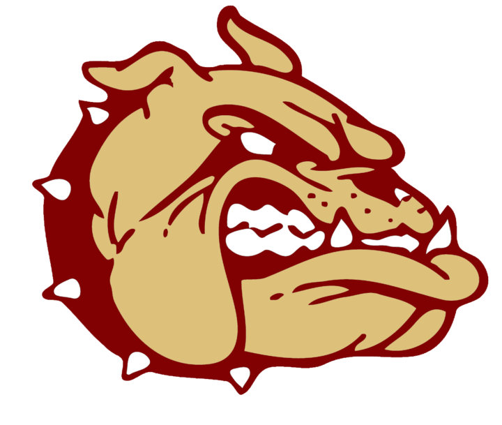 Lincoln Christian School mascot
