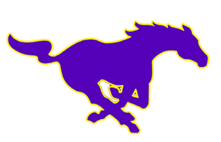 Central Arkansas Christian mascot