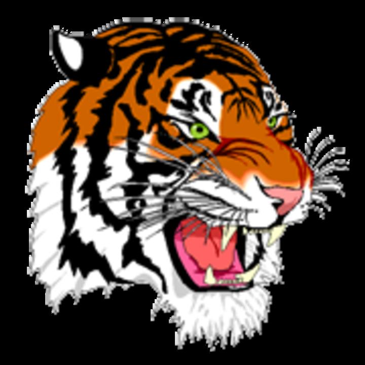 Benton Harbor High School mascot