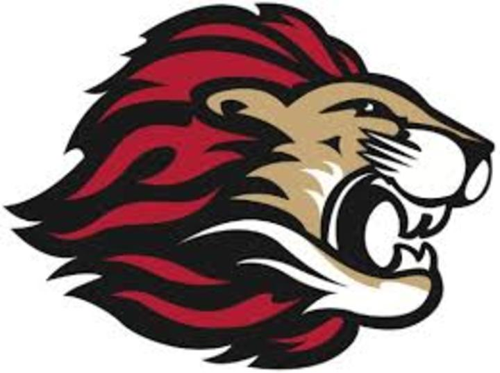 Spring Grove High School mascot