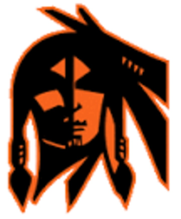 Waukon High School mascot
