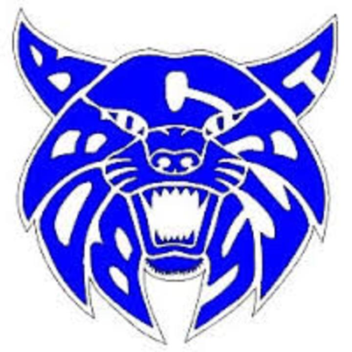 Benton Community High School mascot
