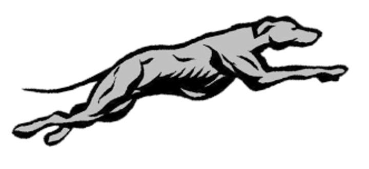 Burlington Community High School mascot