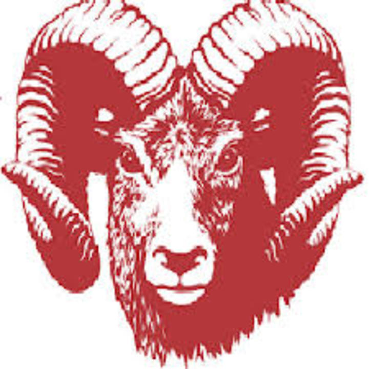 Dubuque Senior High School mascot