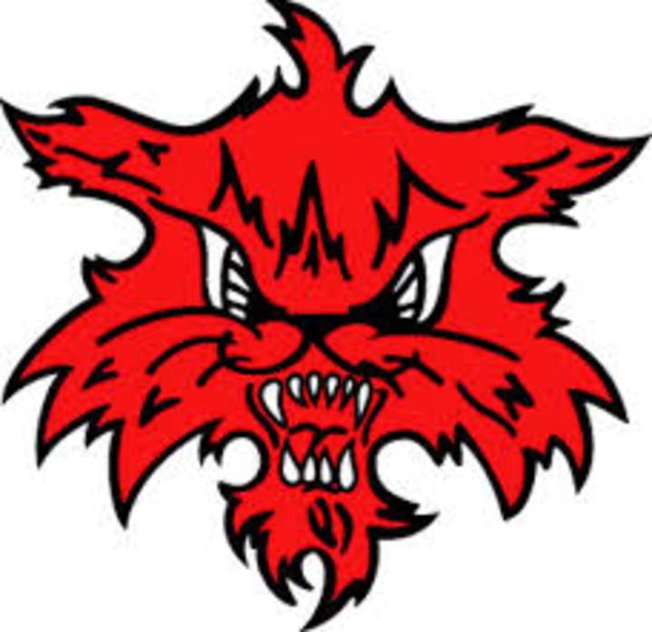 Marshalltown High School mascot