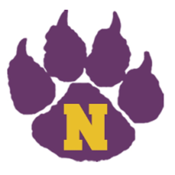 Nevada High School mascot