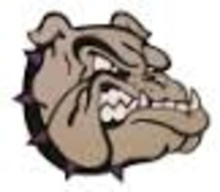 Boyer Valley High School mascot