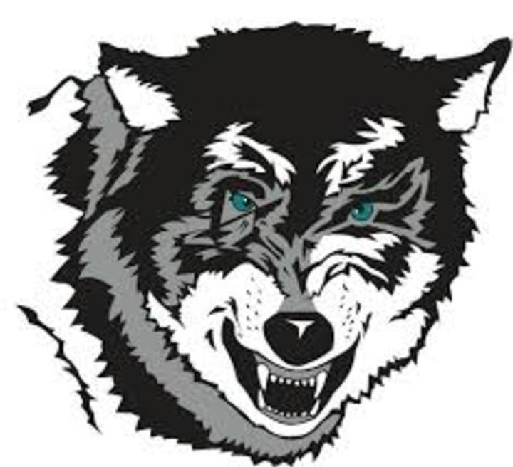 Southwest Valley High School mascot