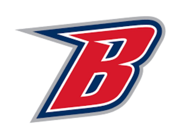 Ballard Community High School mascot