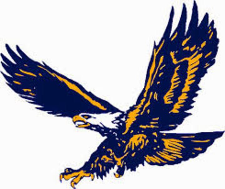 Sheboygan Christian High School mascot