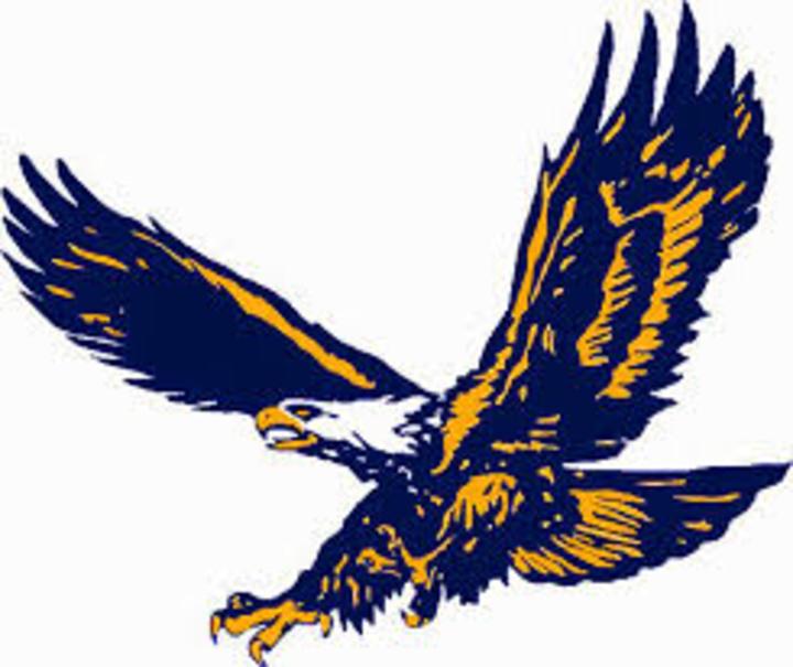 Sheboygan Christian High School mascot