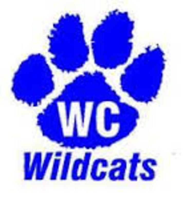 Woodbury Central High School mascot