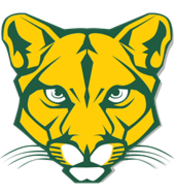Blackhawk High School mascot