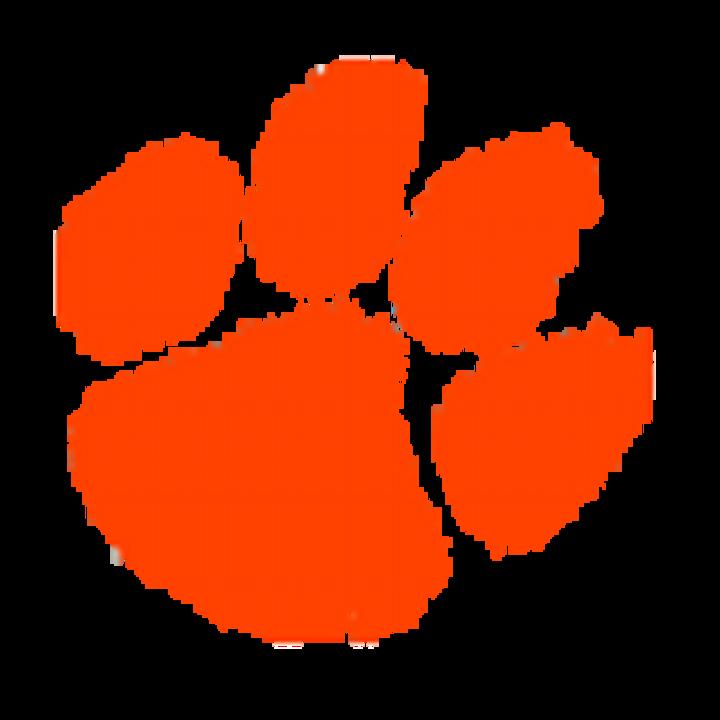 Lawrenceburg High School mascot