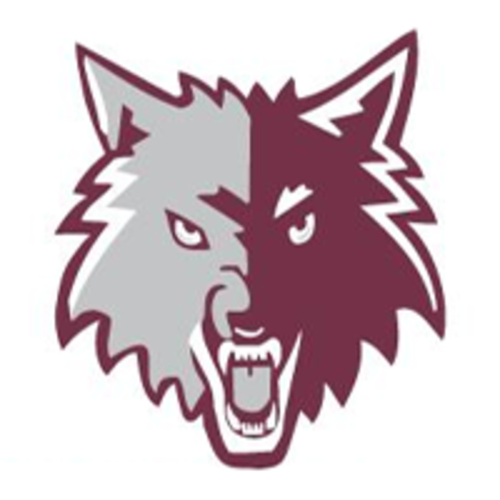 Prairie Ridge High School mascot