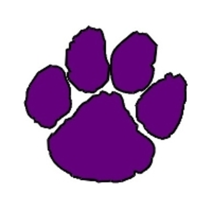 Hampshire High School mascot