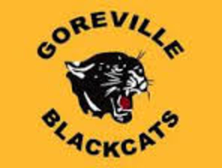 Goreville High School mascot