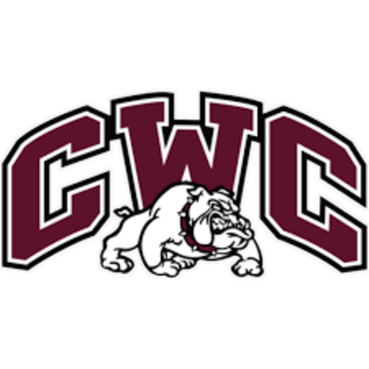 Carmi-White County High School mascot
