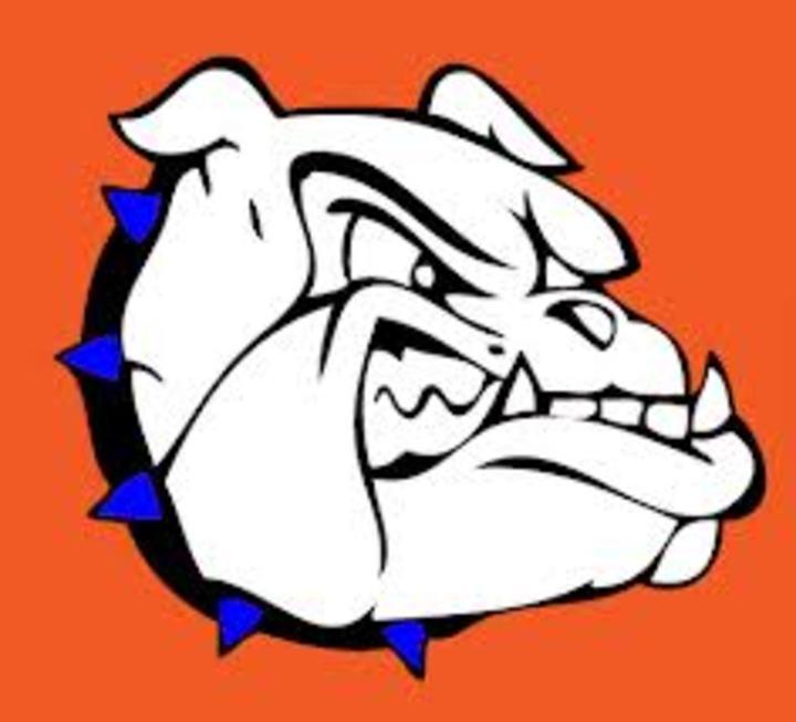 Saint Teresa High School mascot