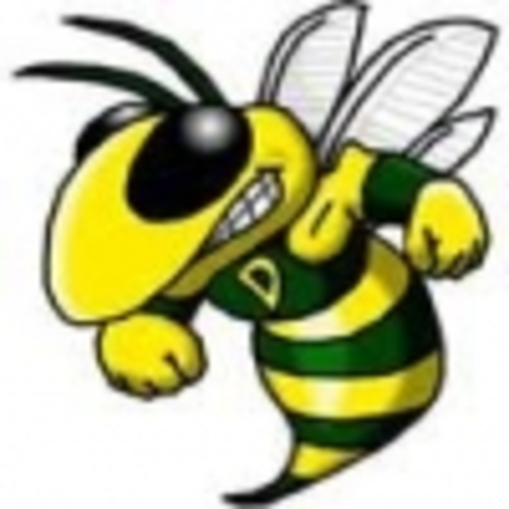 Damascus High School mascot
