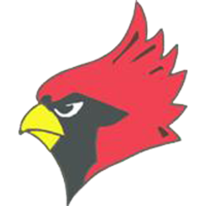 Warrensburg-Latham High School mascot