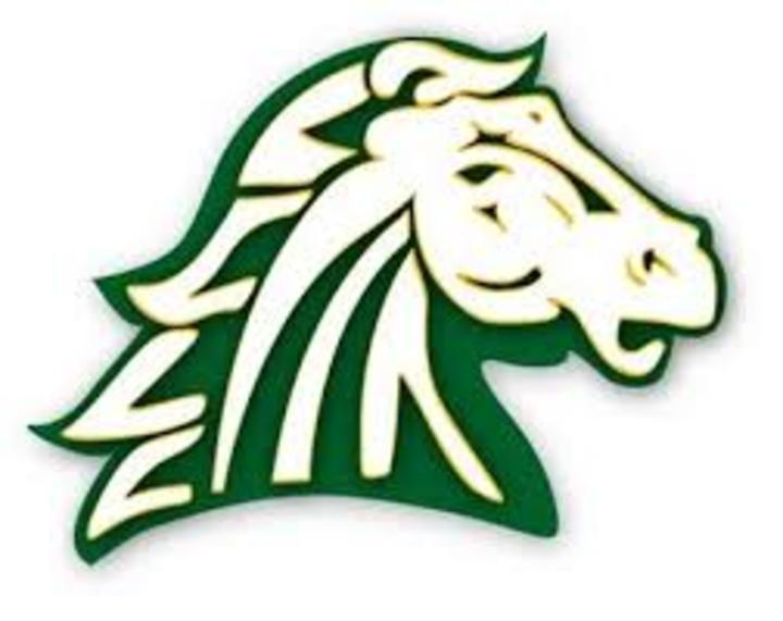 Hempstead High School mascot