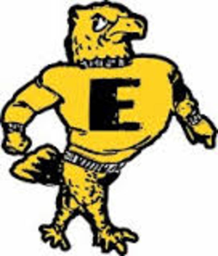 Emmetsburg High School mascot