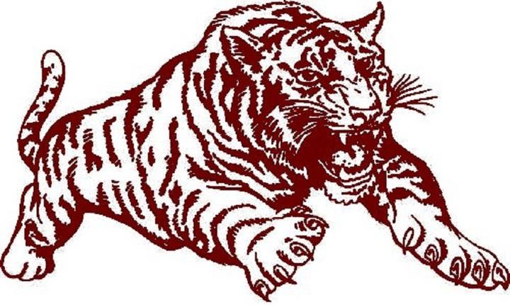 Dupo High School mascot