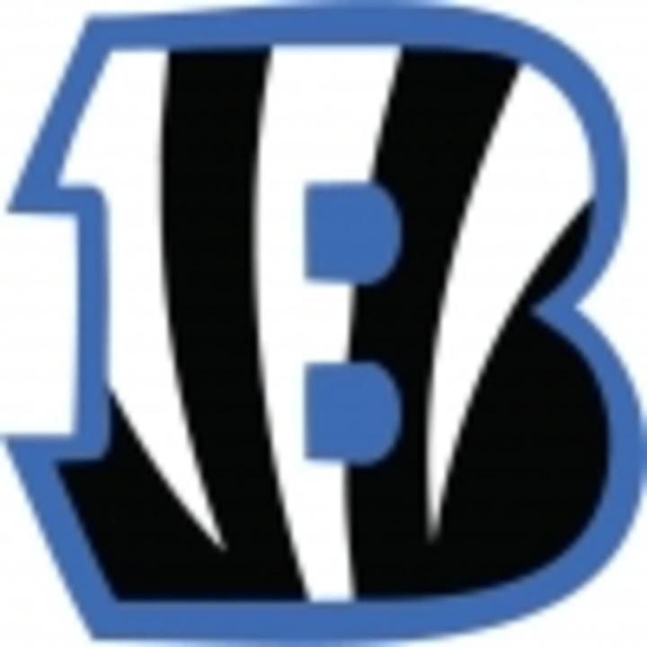 Blake High School mascot