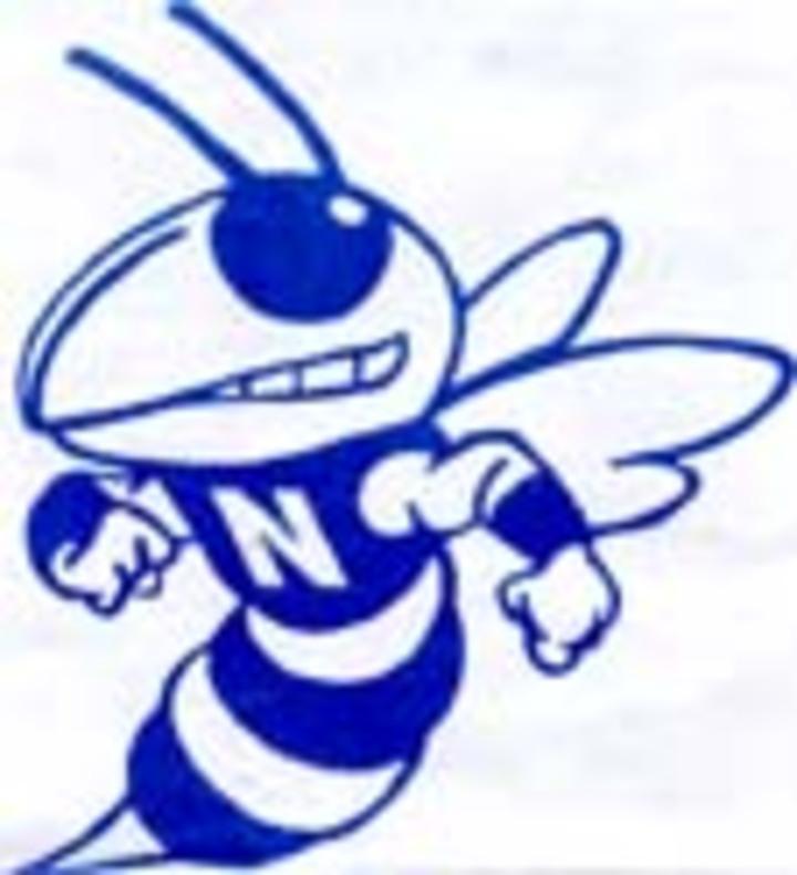 Nashville High School mascot