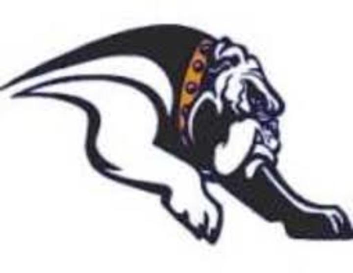 Mediapolis High School mascot