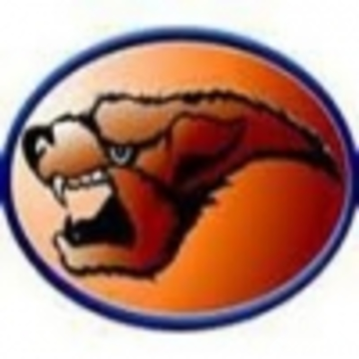 Watkins Mill High School mascot