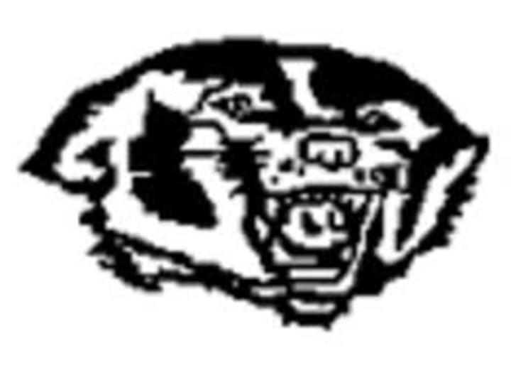 Glenville-Emmons High School mascot