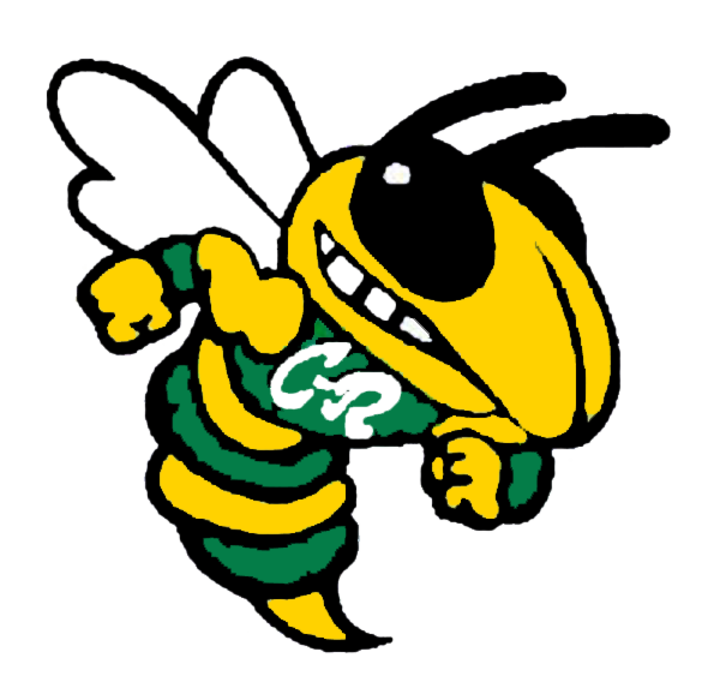 Cory-Rawson High School mascot