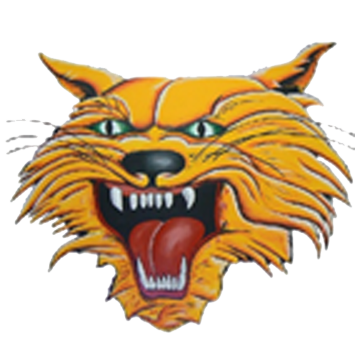 Kalida High School mascot