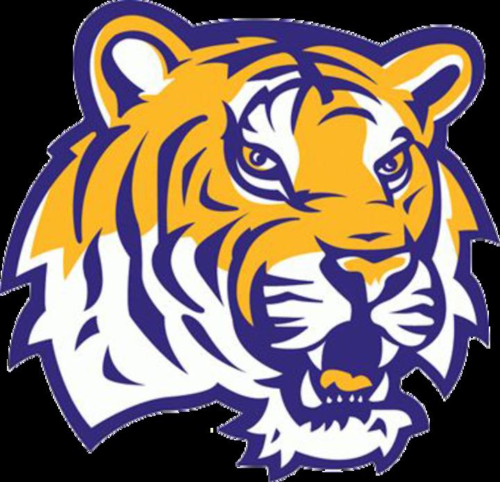 Holgate High School mascot