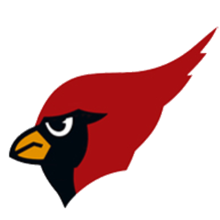 Metamora High School mascot