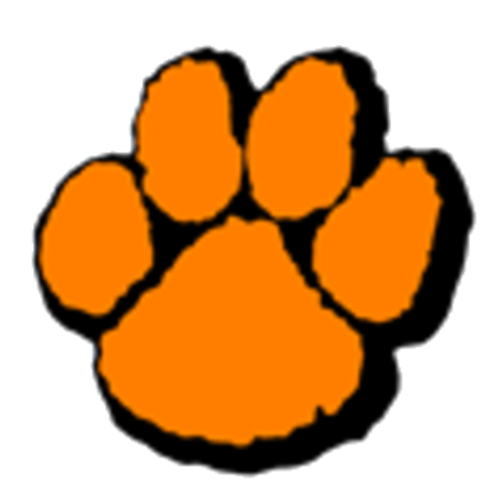 Wheaton Warrenville South High School mascot